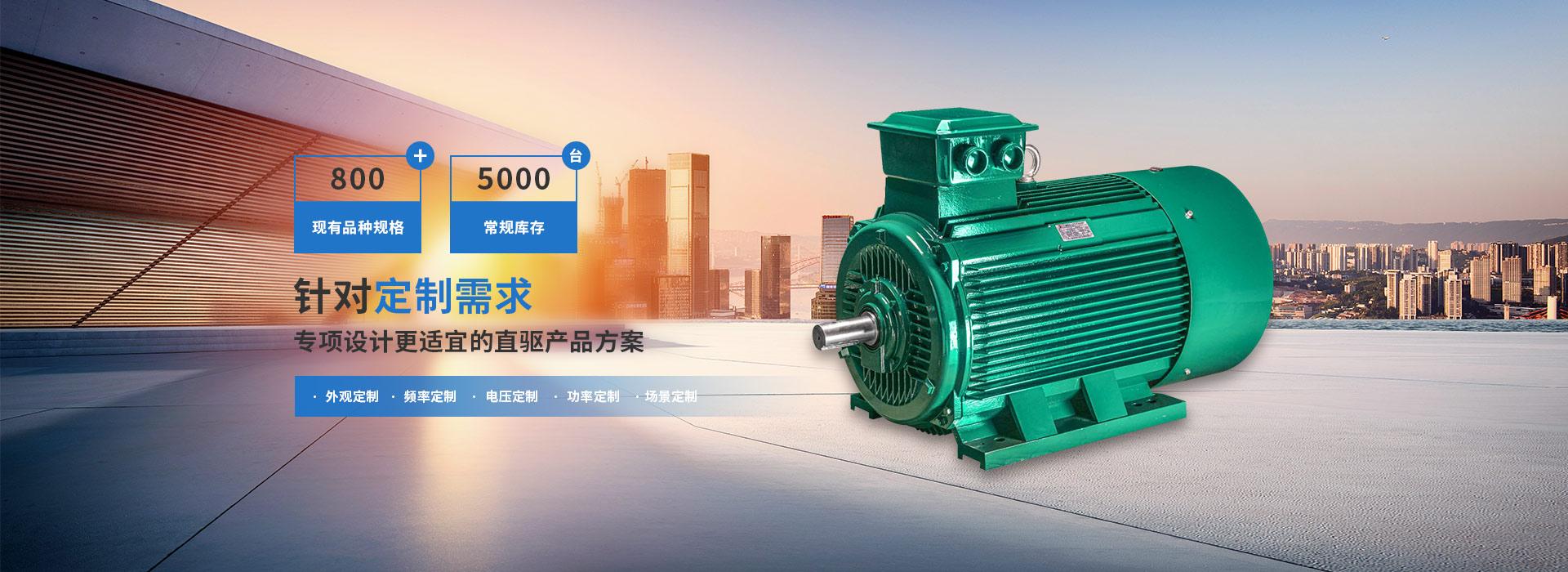 鑫特电机800+现有品种规格